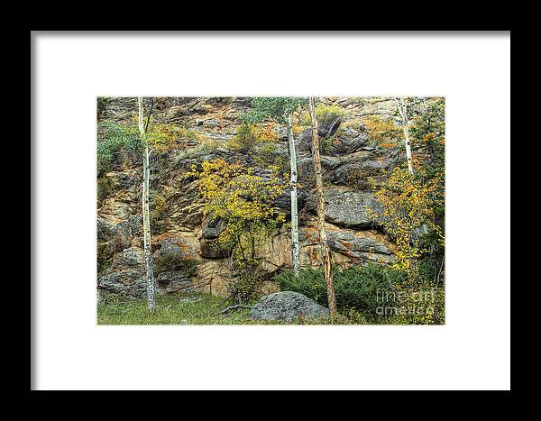 Rock Framed Print featuring the photograph Rocks by Pete Hellmann
