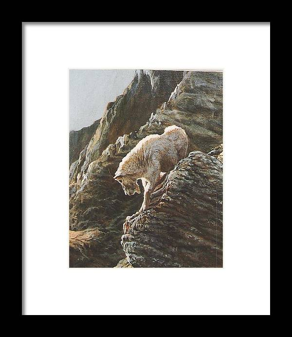 Goat Framed Print featuring the painting Rocky Mountain Goat by Steve Greco