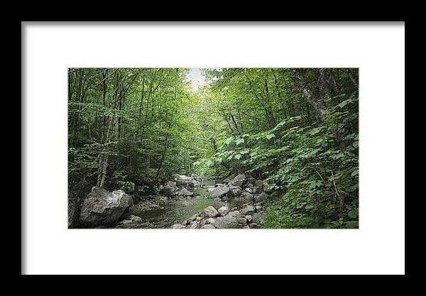 River Framed Print featuring the photograph Rocky River In Green by Kevin Humphrey