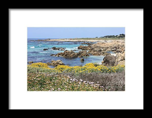Ocean Framed Print featuring the photograph Rocky Surf With Wildflowers by Carol Groenen