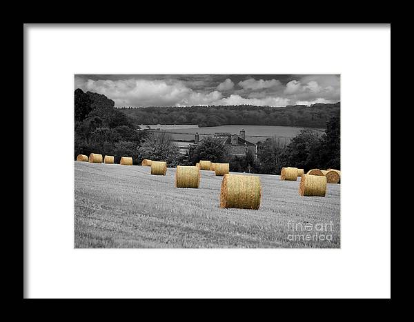 Bales Framed Print featuring the photograph Rolling Home by Carl Whitfield