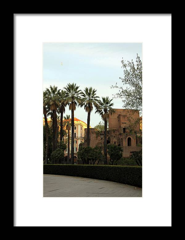 Rome Framed Print featuring the photograph Rome's Park by Munir Alawi