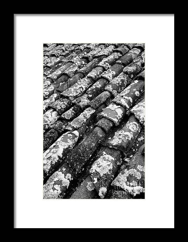 Ceramics Framed Print featuring the photograph Roof Tiles by Gaspar Avila