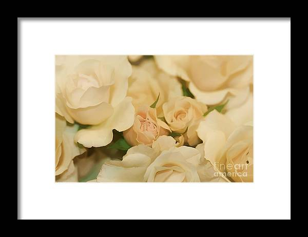 White Framed Print featuring the photograph Rose Bouquet by Deborah Benoit