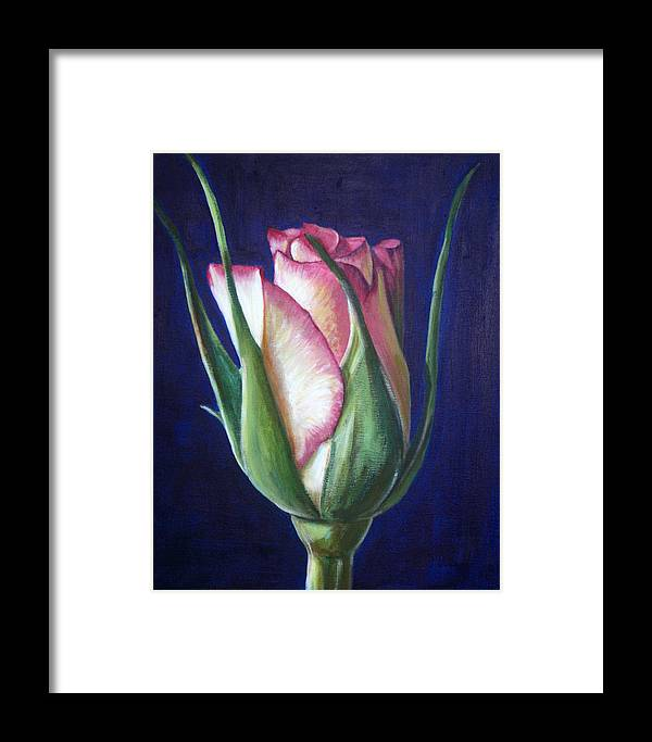 Rose Framed Print featuring the painting Rose Bud by Fiona Jack