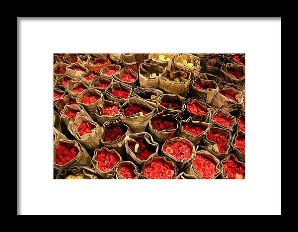 Roses Framed Print featuring the photograph Rose Rolled In Newspaper by Minaz Jantz