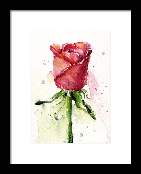 Rose Framed Print featuring the painting Rose Watercolor by Olga Shvartsur