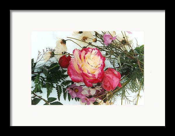 Roses Framed Print featuring the photograph Roses In The Snow by Bob Gardner