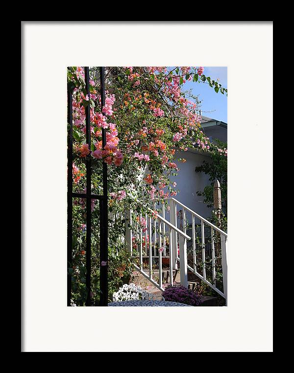 Roses Framed Print featuring the photograph Roses In Winter by Susanne Van Hulst