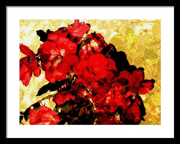 Flowers Framed Print featuring the digital art Roses by Sally Engdahl