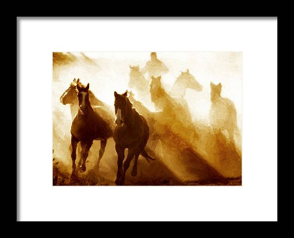 Horses Framed Print featuring the photograph Round Up by Nick Sokoloff