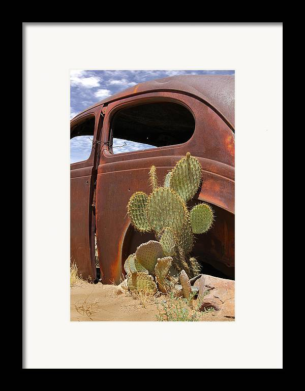Southwest Framed Print featuring the photograph Route 66 Cactus by Mike McGlothlen