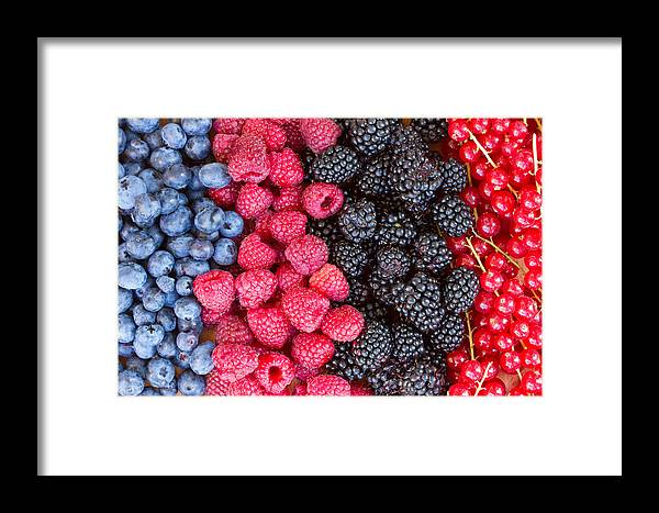 Berries Framed Print featuring the photograph Rows Of Berries by Anastasy Yarmolovich