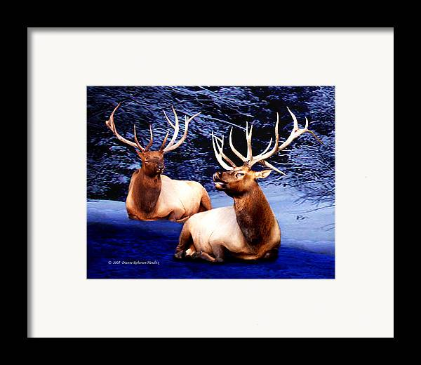 Alaska Framed Print featuring the photograph Royal Elk by Dianne Roberson