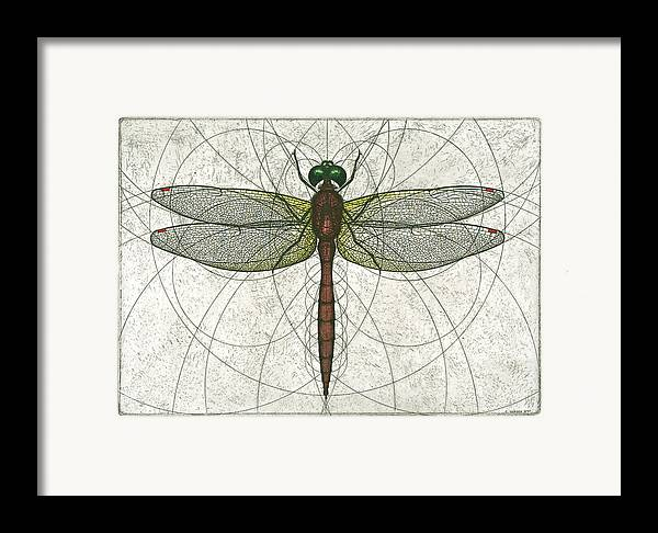 Ruby Framed Print featuring the painting Ruby Meadowhawk Dragonfly by Charles Harden