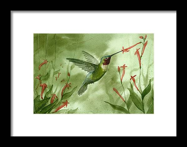 Birds Framed Print featuring the painting Ruby Throated Hummingbird by Sean Seal