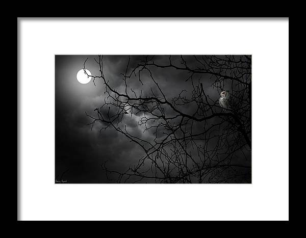 Ruler Of The Night Framed Print By Lourry Legarde