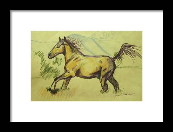 Horses Framed Print featuring the drawing Running Free by Jamey Balester