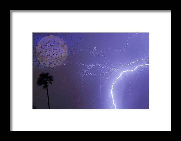 Lightning Framed Print featuring the photograph Running From The Storm by James BO Insogna