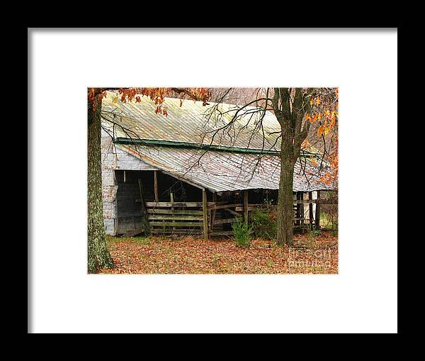 Rural Framed Print featuring the photograph Rural by Amanda Barcon