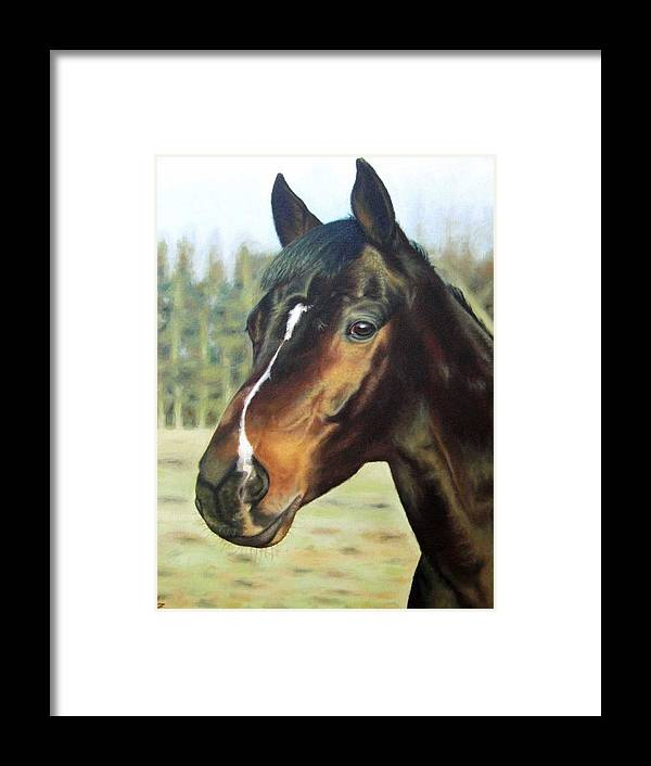 Horse Framed Print featuring the painting Russian Horse by Nicole Zeug