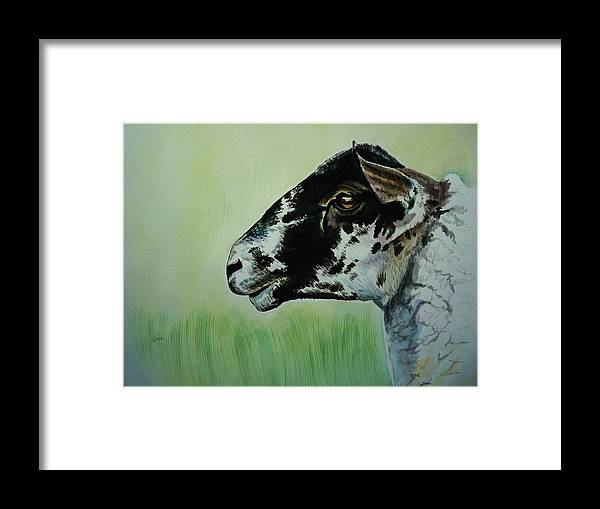 Sheep Framed Print featuring the painting Rutland Sheep 2 by Lucy Deane
