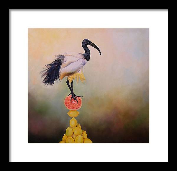 Bird Framed Print featuring the painting Sacred Ibis Lemon Pyramid by Valerie Aune