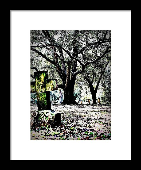 Tree Framed Print featuring the photograph Sacred Rest by Jill Tennison