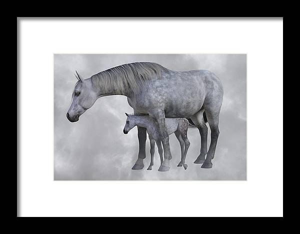 Horse Framed Print featuring the digital art Safe Harbor by Betsy Knapp