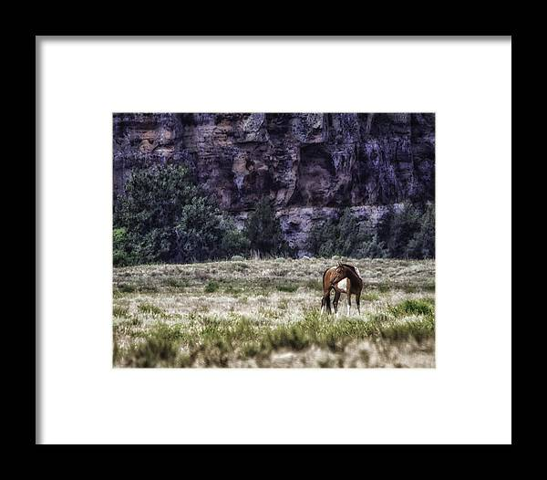 South Dakota Framed Print featuring the photograph Safe In The Valley by Elizabeth Eldridge