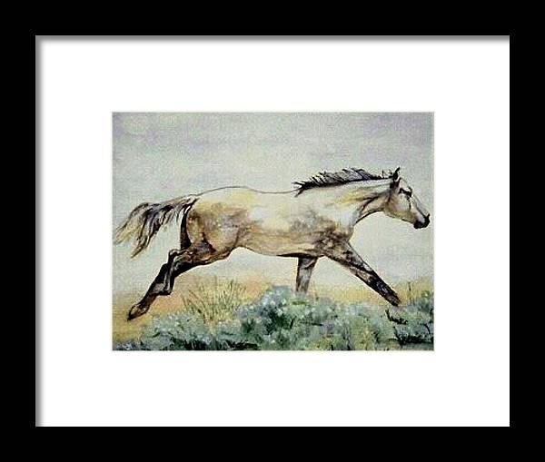 Quarter Horse Framed Print featuring the painting Sage Runner by Debra Sandstrom