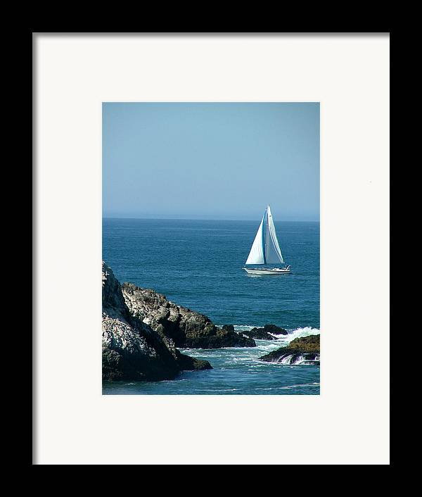 Boats Framed Print featuring the photograph Sail Away by Donna Thomas