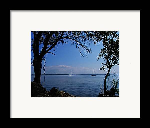 Trees Framed Print featuring the photograph Sail Boats On The Bay by Judy Waller