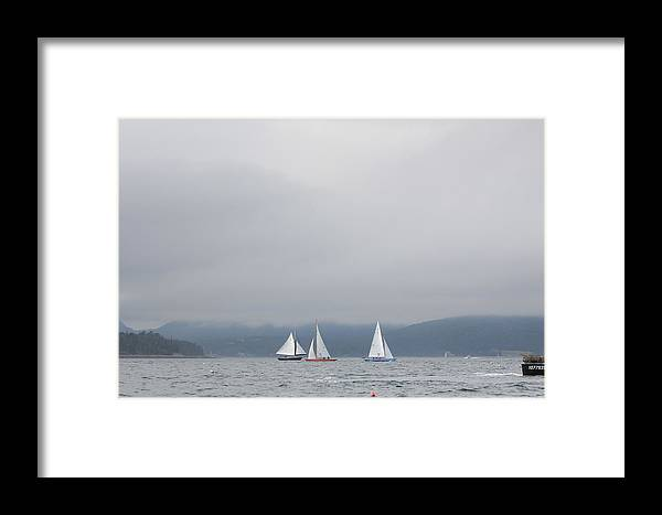 Framed Print featuring the photograph Sailboat Races by Martha Boyle