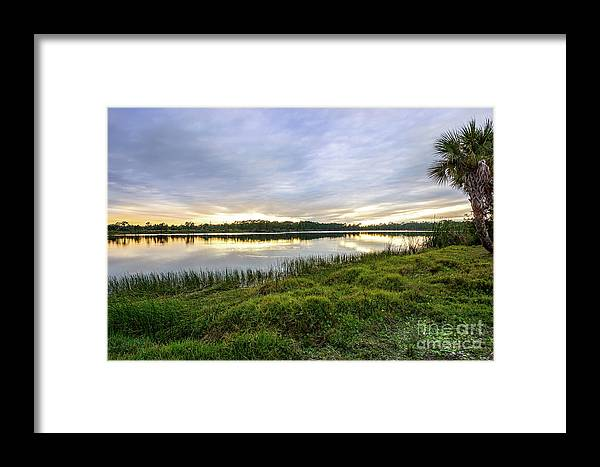 Saint Lucie County Framed Print featuring the photograph Saint Lucie Nature by L Bee
