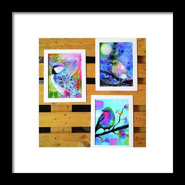 Framed Print featuring the photograph *sale* 3 11 X 14 In. Bird Prints With by Robin Mead