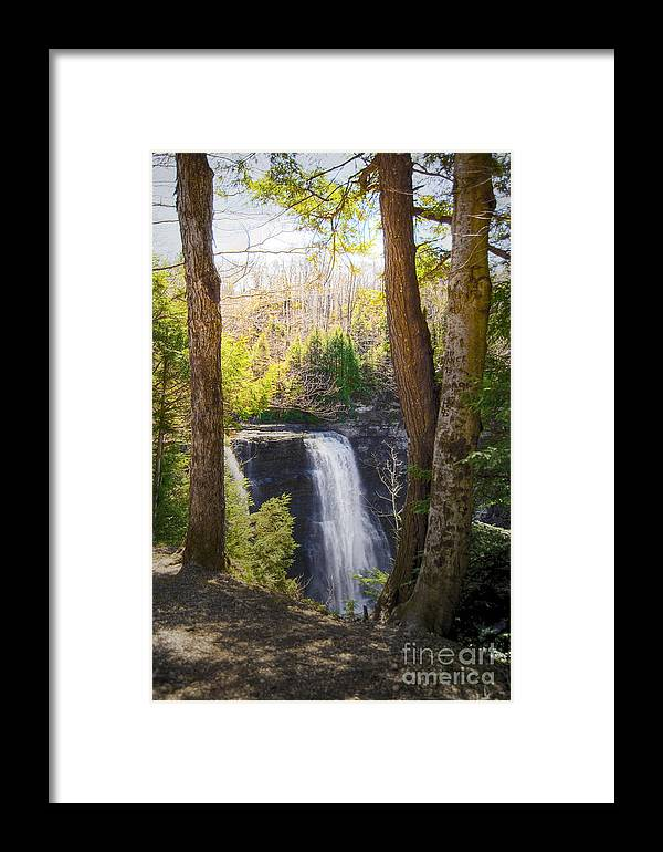 Waterfalls Landscape Framed Print featuring the photograph Salmon River Falls by Pat Carosone