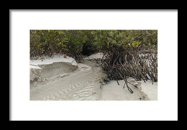 Beach Framed Print featuring the photograph Saltwater Creek by Jessicca Lawrence
