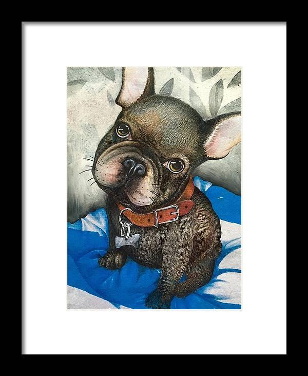 French Bulldog Framed Print featuring the mixed media Sammy The French Bulldog by Sharon Hulme
