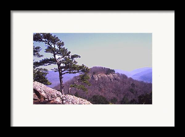 Framed Print featuring the photograph Sams Throne19 by Curtis J Neeley Jr