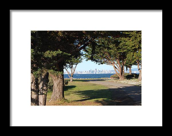 San Francisco Framed Print featuring the photograph San Francisco Framed By Trees by Jean Booth