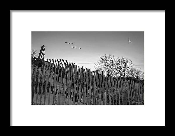 2d Framed Print featuring the photograph Dune Fences - Grayscale by Brian Wallace