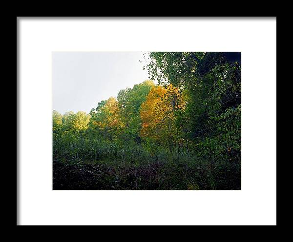 Autumn Framed Print featuring the photograph Sand Gap Hillside by George Ferrell