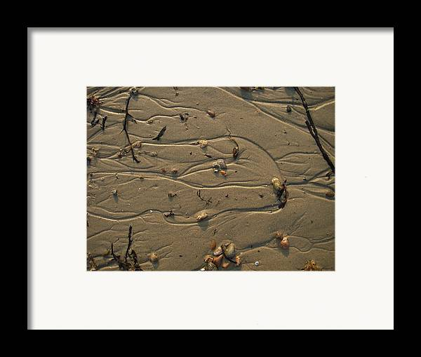 Nature Framed Print featuring the photograph Sand Patterns 1 by Eric Workman