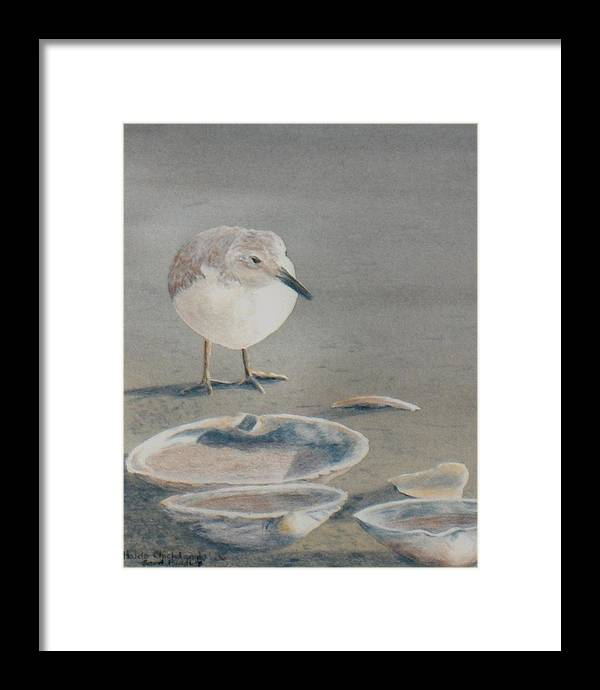Sandpiper Framed Print featuring the painting Sand Puddles by Haldy Gifford
