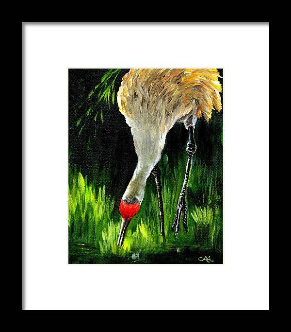 Bird Framed Print featuring the painting Sandhill Crane by Carol Allen Anfinsen