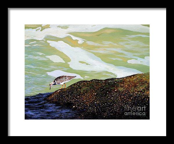 Sandpiper Framed Print featuring the painting Sandpiper At Ponce Inlet by Michael Nowak