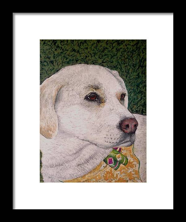 Dog Framed Print featuring the painting Sara by David Horning