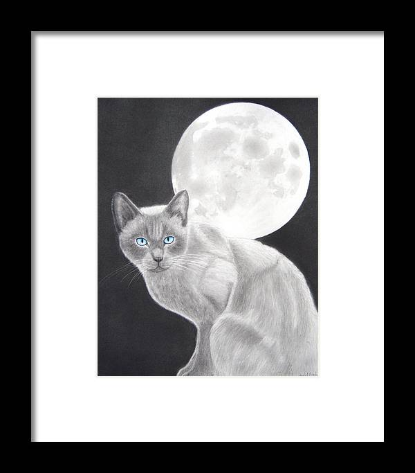 Cat Framed Print featuring the drawing Sasha by Nicole I Hamilton