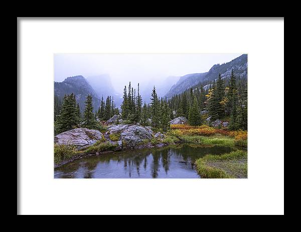 Saturated Forest Framed Print featuring the photograph Saturated Forest by Chad Dutson